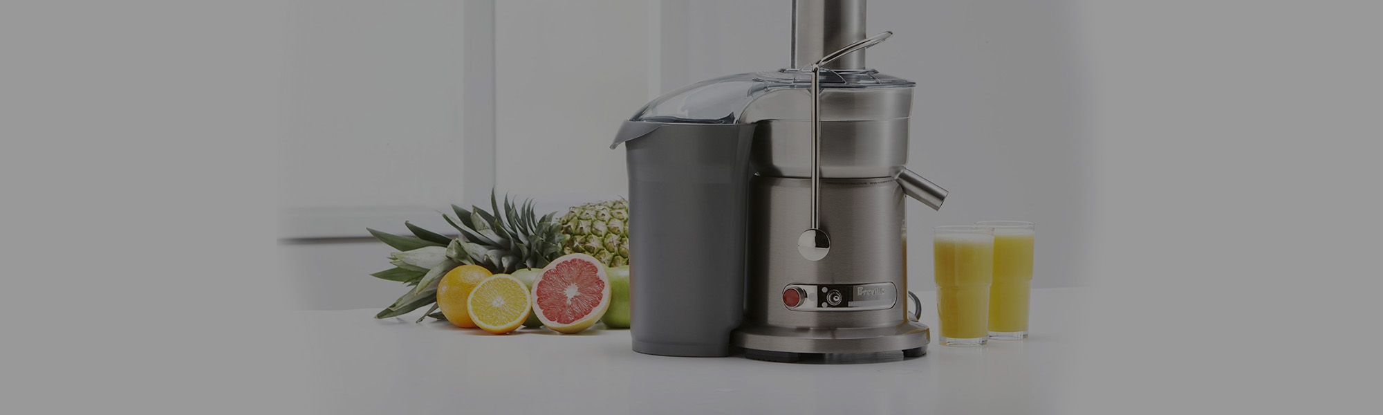 Breville 1000-Watt Juice<br>Fountain Elite Juice Extractor
